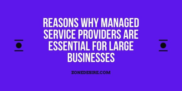 Managed Service Providers